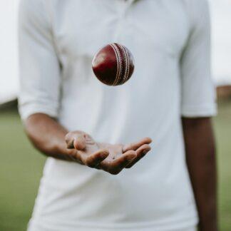Cricketbollar